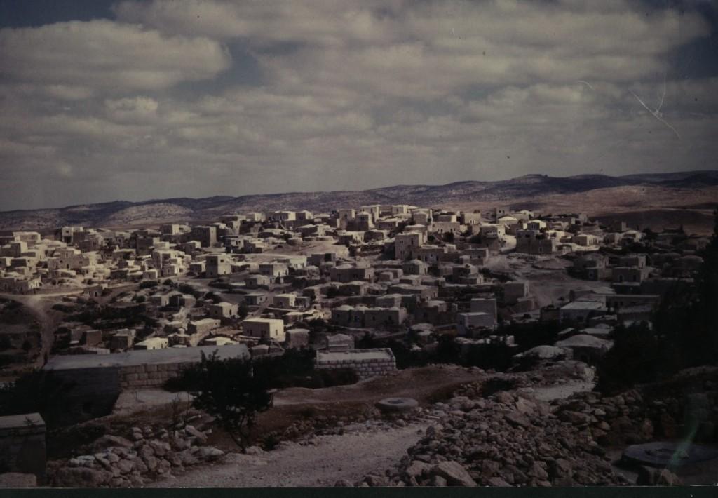 Surif-1964